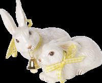 Pár zajacov so stužkami Easter Bunnies