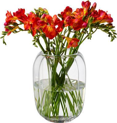 Váza/lampa na čajovú sviečku Coloured DeLight - 1