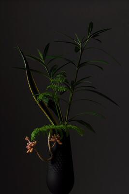 Vysoká váza, Perle, 26 cm Manufacture Collier noir - 2