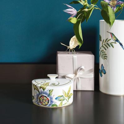 Porcelánová dóza 16 x 13 x 10 cm Amazonia Gifts - 2